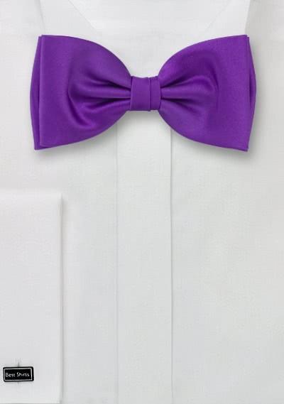 Fliege violett