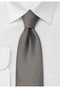 Moulins Krawatte in aschbraun